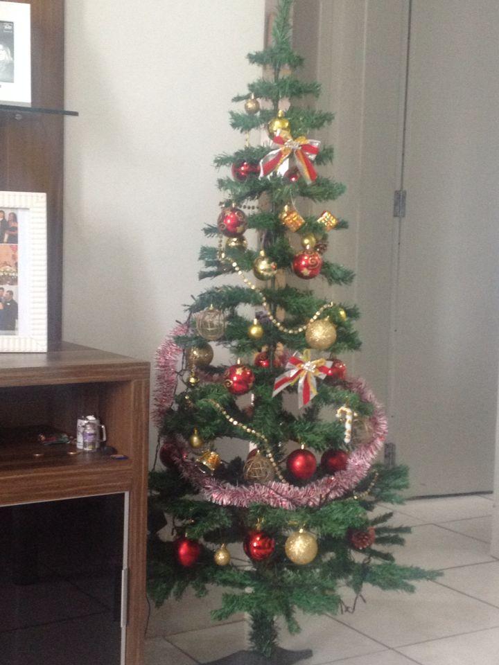 Nosso pinheirinho de Natal