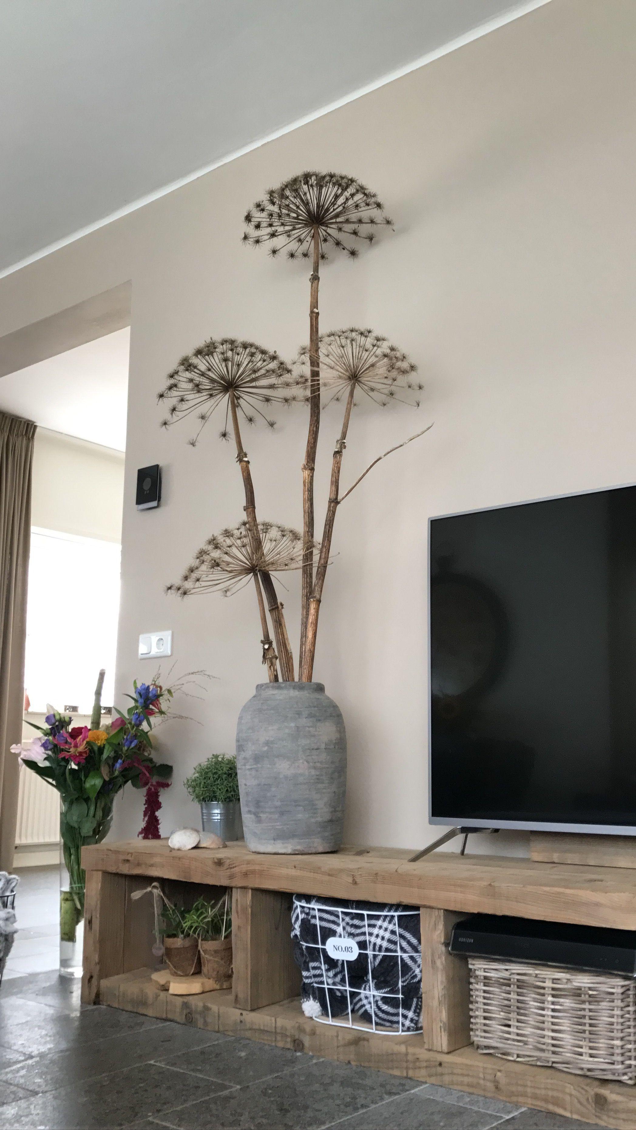 Photo of Grote berenklauw #wanddekowohnzimmer Grote berenklauw