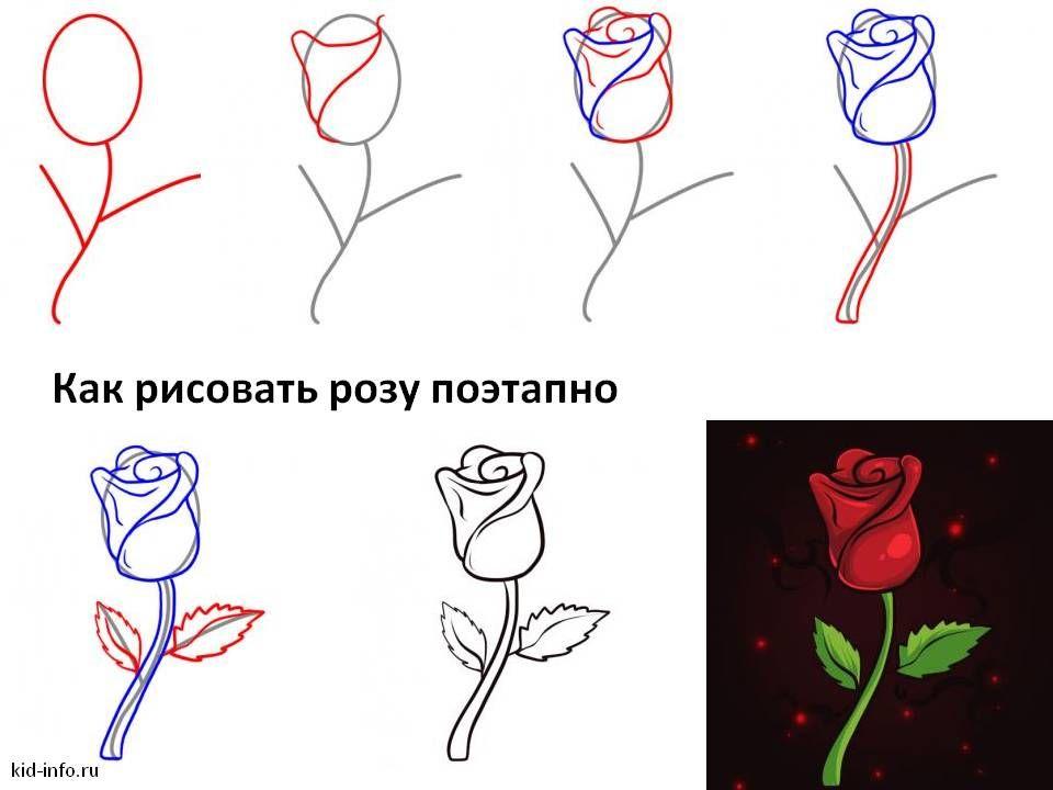 Своими руками, как нарисовать розу картинки карандашом