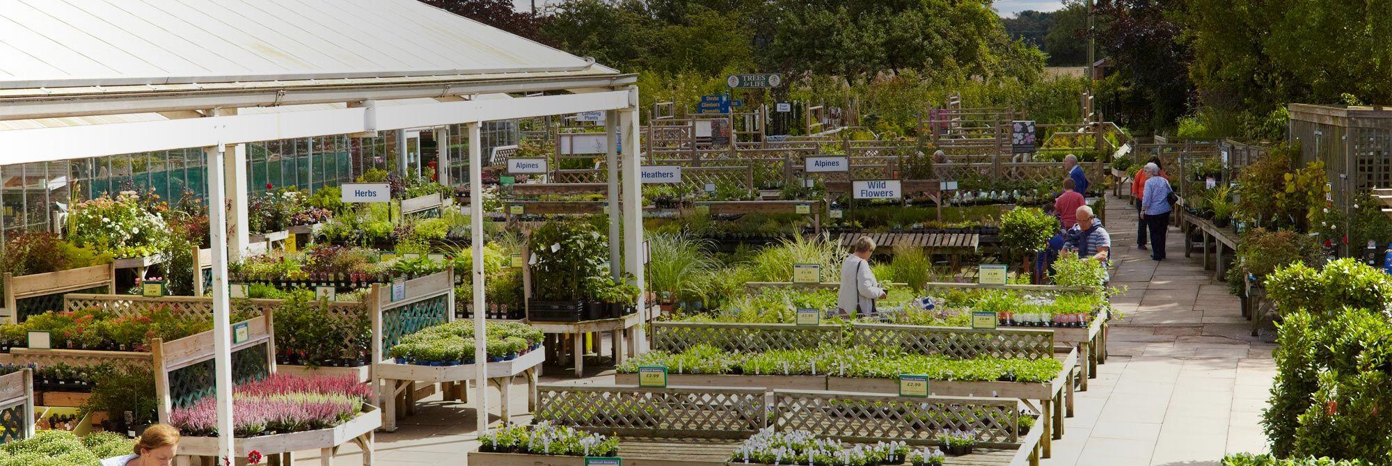York Garden Centre - Dean\'s Garden Centre   UK shops, markets ...