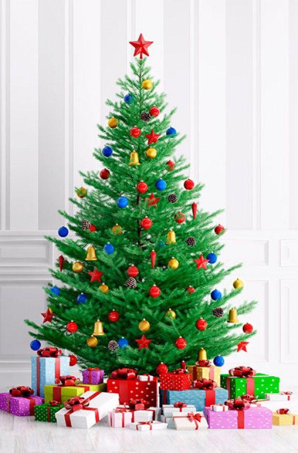 20 Awesome Christmas Tree Decorating Ideas Tree decorations - white christmas tree decorations