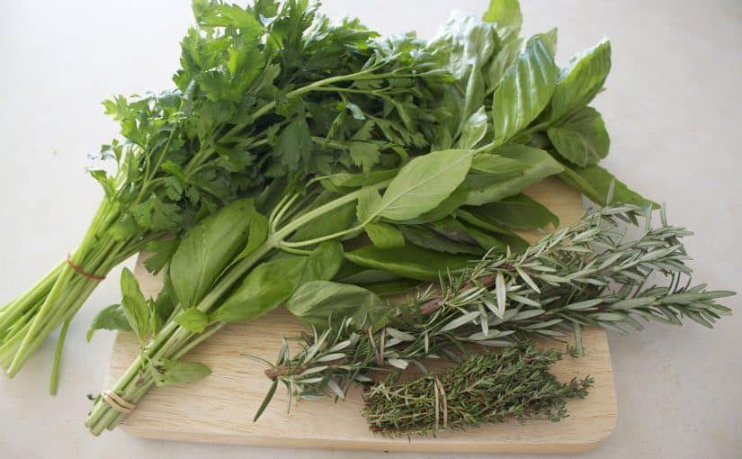 فوائد عشبة الاذخر Herbs Fresh Herbs Buy Plants