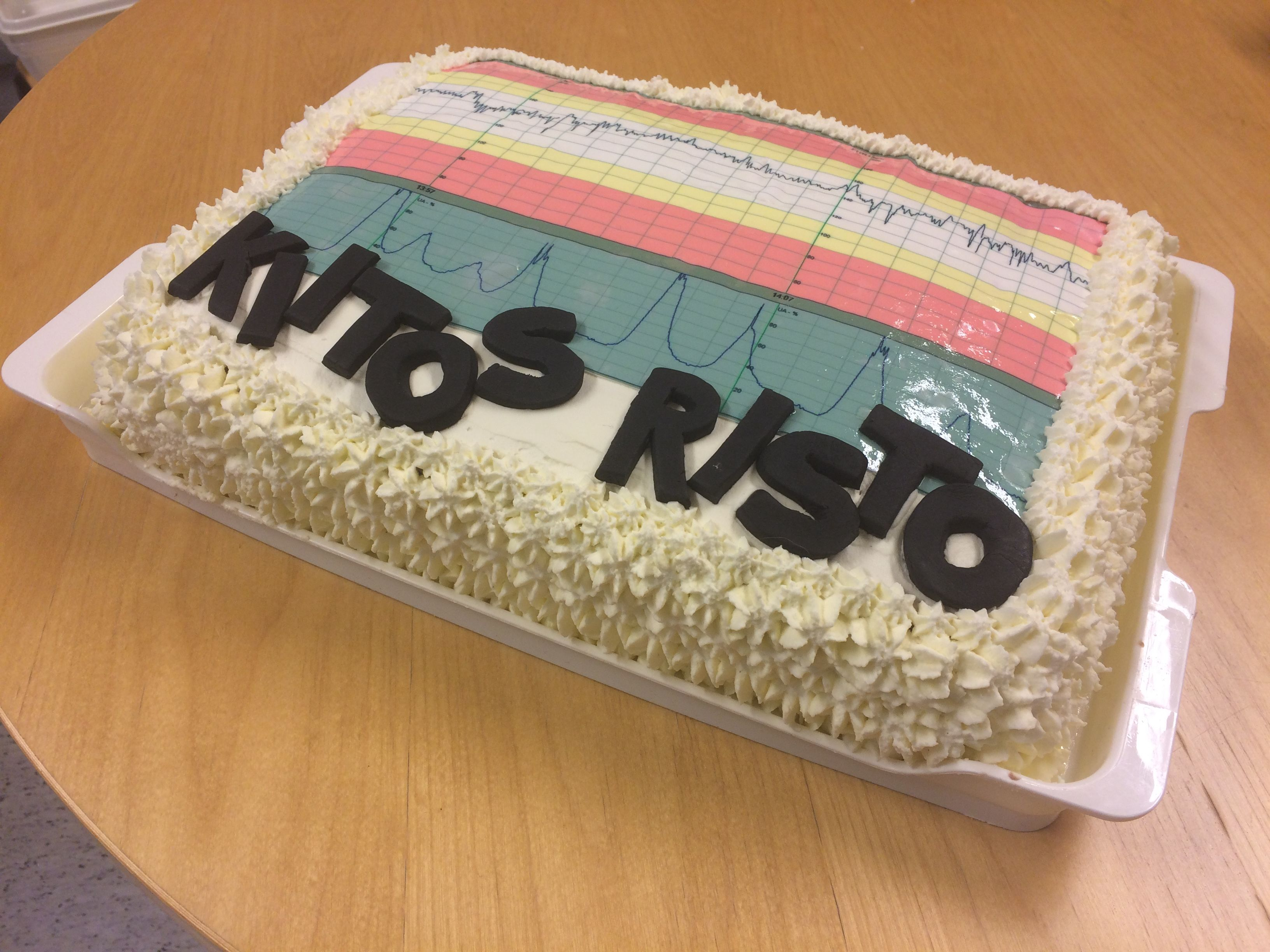 Annan tekemä kakku Ristolle :-)