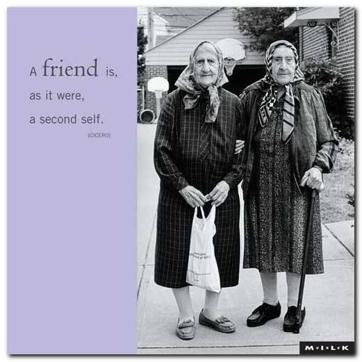 A Twinkle In Your Wrinkle Via Mom Friends Quotes Friendship