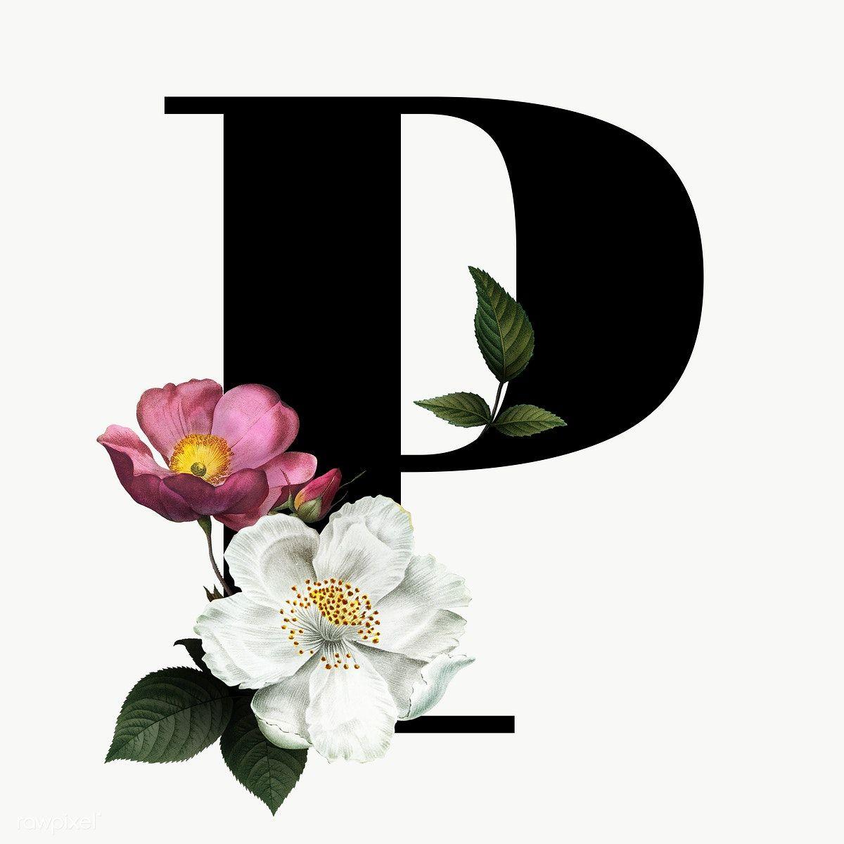 Classic And Elegant Floral Alphabet Font Letter P Transparent Png Free Image By Rawpixel Com Manota Lettering Alphabet Fonts Fonts Alphabet Lettering Fonts