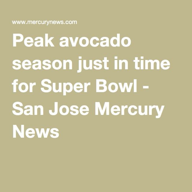 Peak avocado season just in time for Super Bowl - San Jose Mercury News