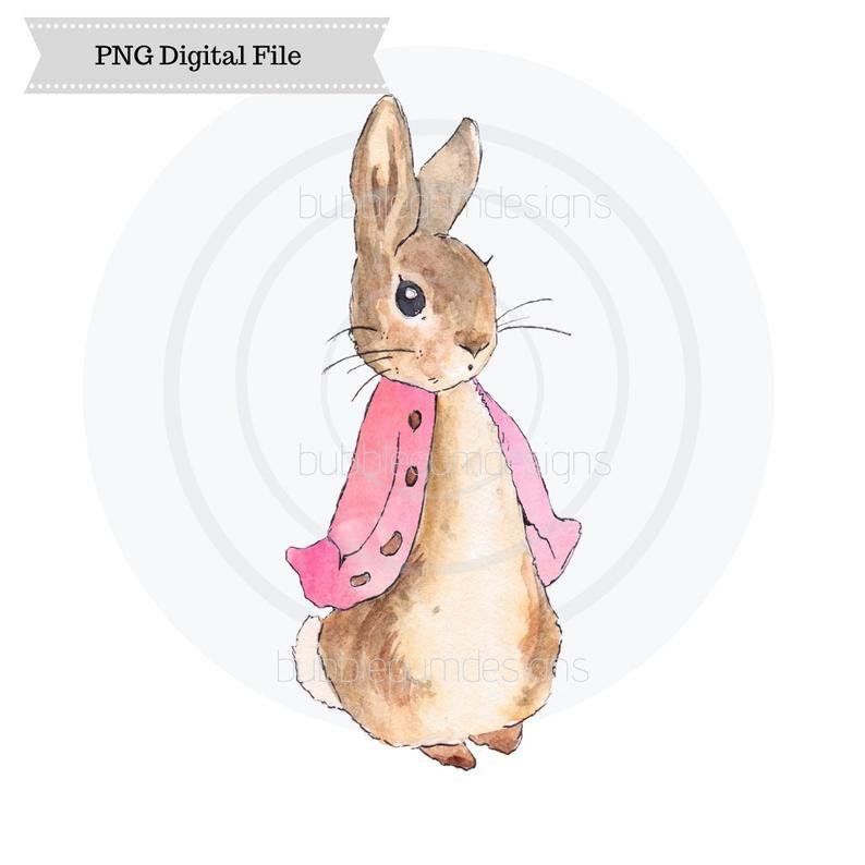 Flopsy Bunny Png Peter Rabbit Sublimation Design Easter Design Digital Download Printable Art Peter Rabbit Rabbit Painting Peter Rabbit And Friends