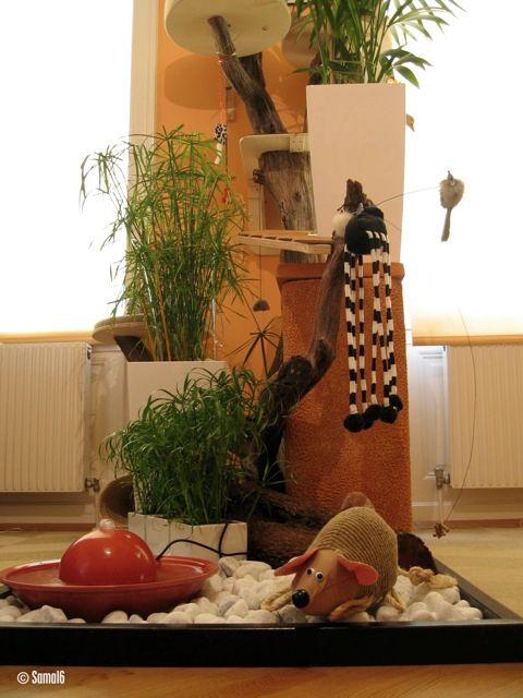 einrichtungsideen und anregungen f r die katzenwohnung problemkatze nathalie a cat dog. Black Bedroom Furniture Sets. Home Design Ideas