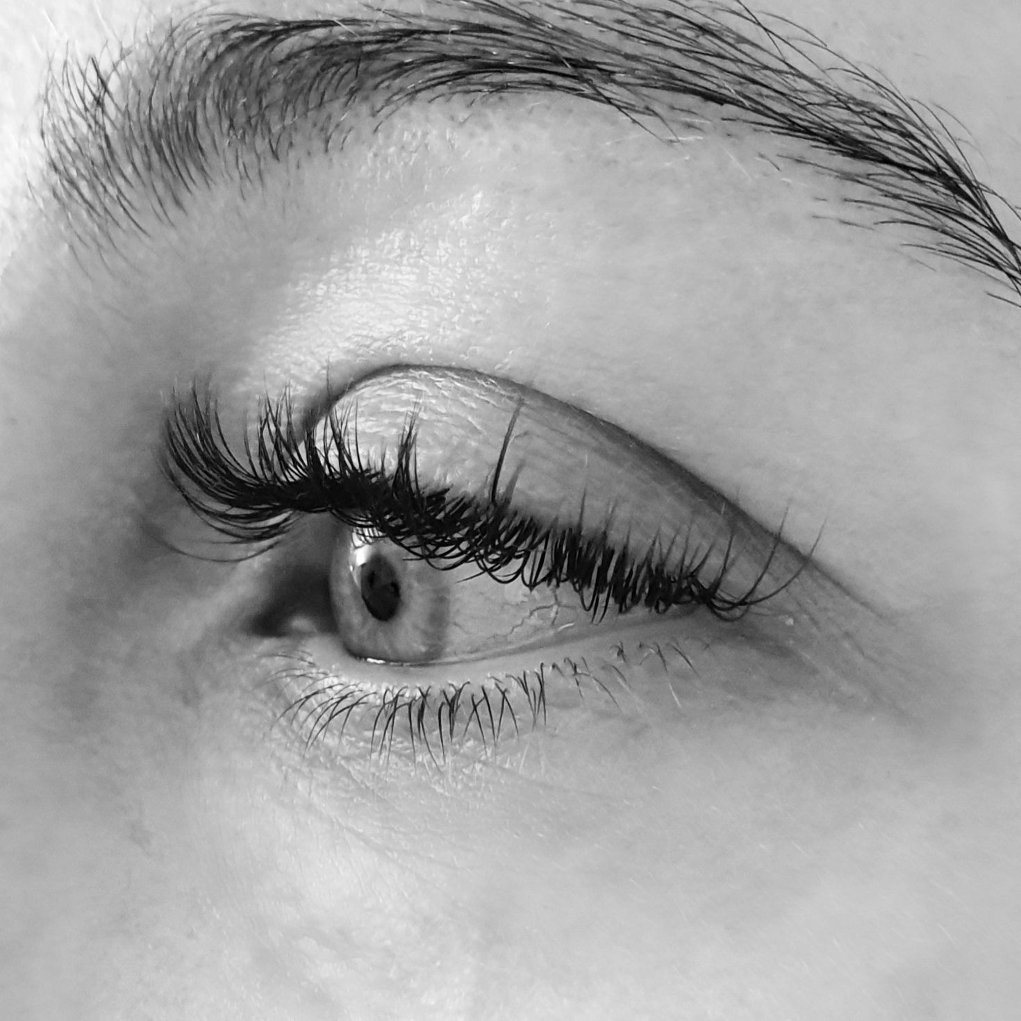 Eyelash Extensions - Beginner's Guide   Eyelash extensions ...