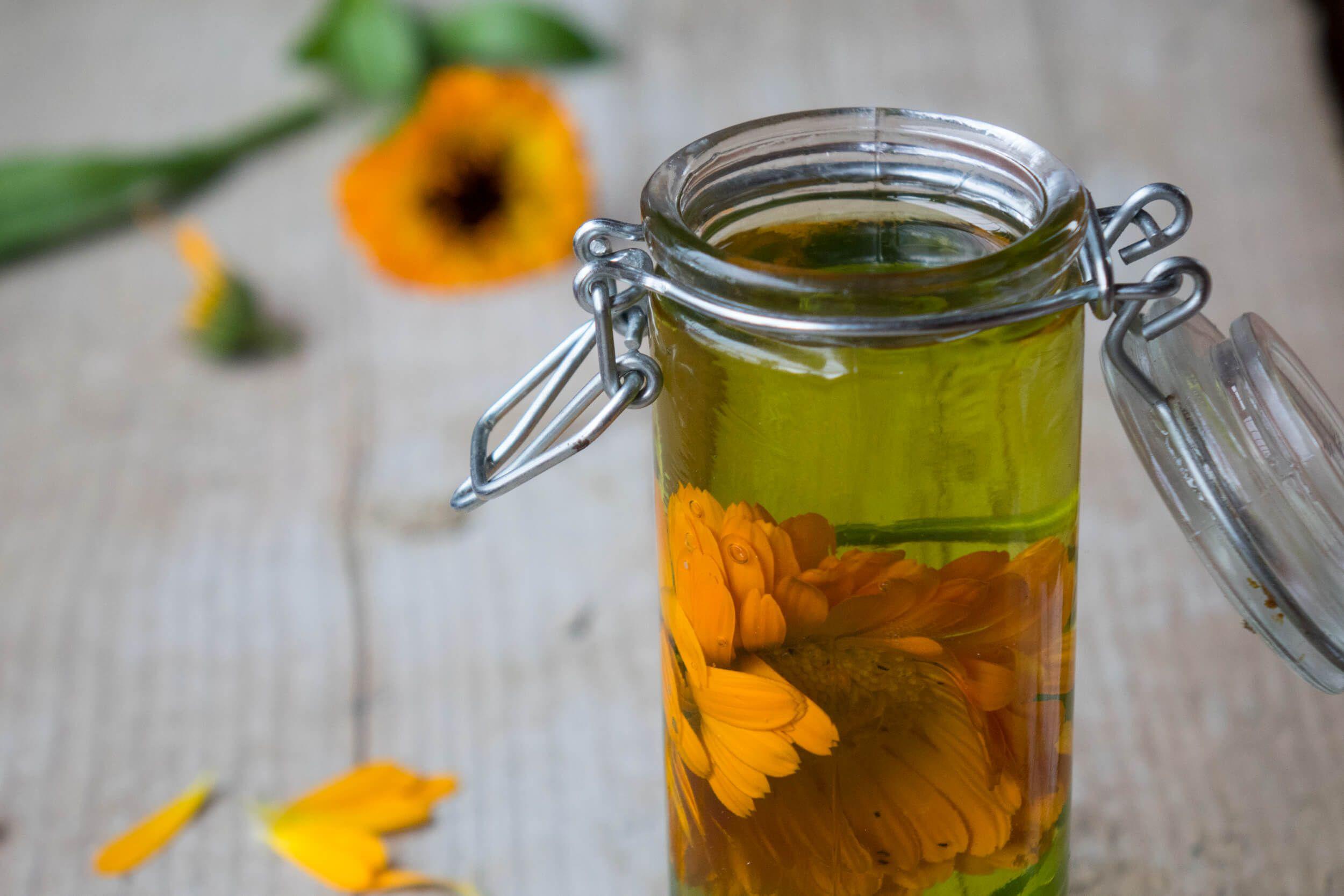 Jak Zrobic Olej Z Nagietka Lekarskiego Healing Herbs Herbs Healthy Tips
