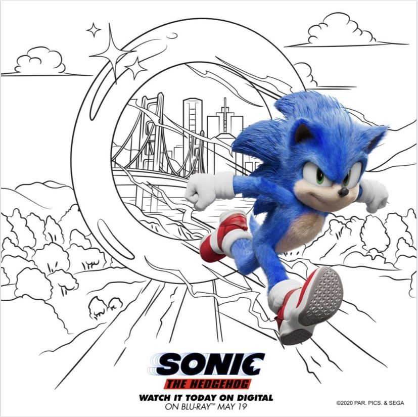 8 Sonic The Hedgehog Activity Sheets Sonic The Hedgehog Hedgehog Movie Sonic