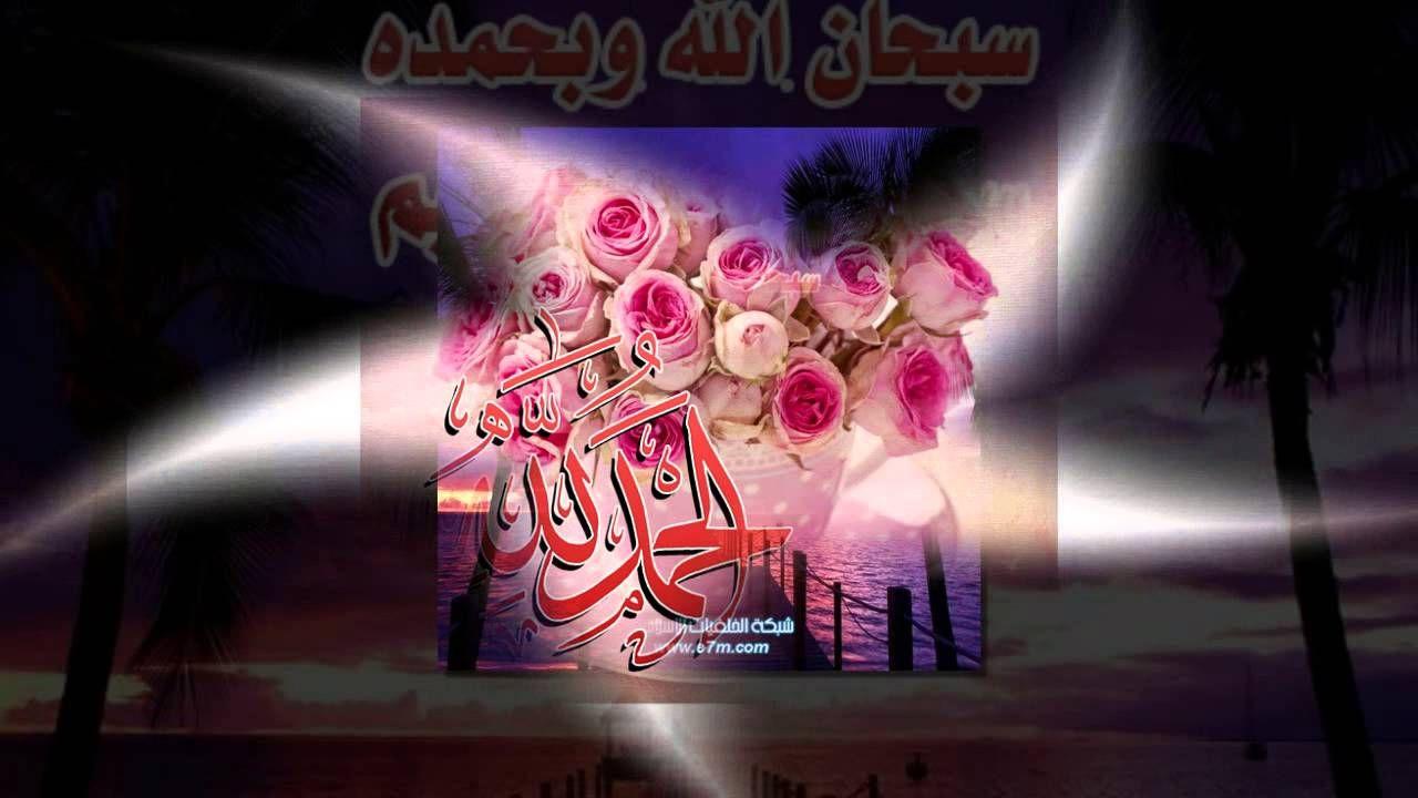 تلاوة خاشعة سورة الملك الشيخ ماهر المعيقلي Www Qoranet Net Neon Signs Neon