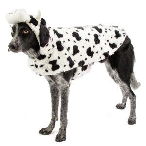 Cow Costume For Dogs Goldenacresdogs