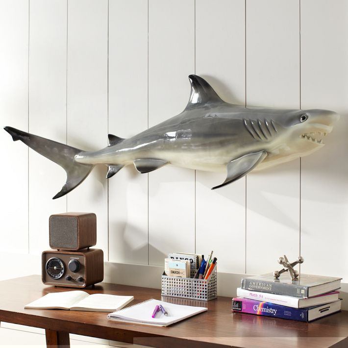 I Think Itu0027s Cool Novelty Shark Décor