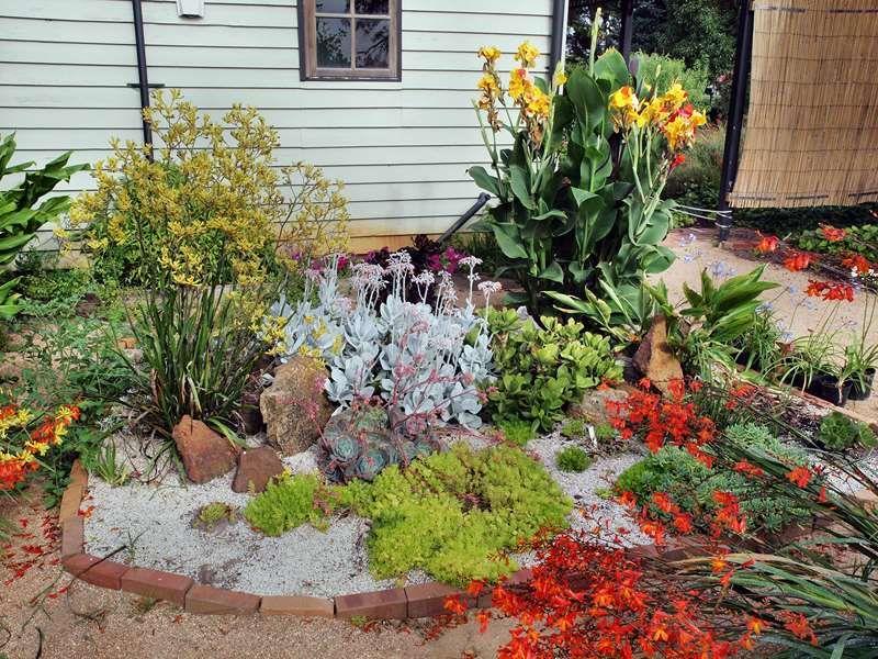 Diseñar un jardín de suculentas al aire libre Diseñar un jardín de suculentas en el e...