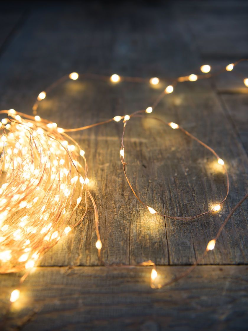 Plug-In LED Fairy Lights on Copper Wire | Gardeners.com #fairylights