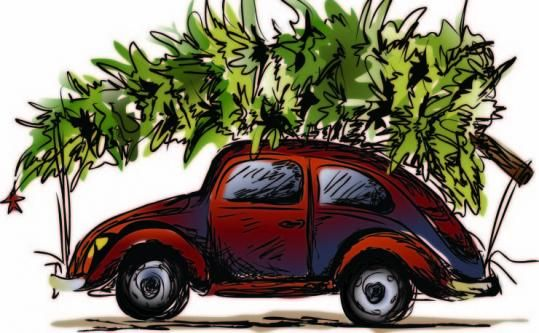 Strapping Christmas Trees To Your Car Roof Here S The Rules Christmas Memory Christmas Car Merry Little Christmas