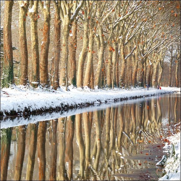 Breathtaking Winter Reflections on the Water