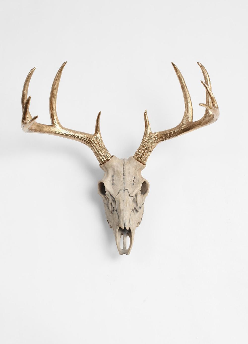 Natural Deer Skull W Gold Antlers Faux Deer Animal Skull Etsy Deer Skulls Animal Skulls Animal Skull Decor
