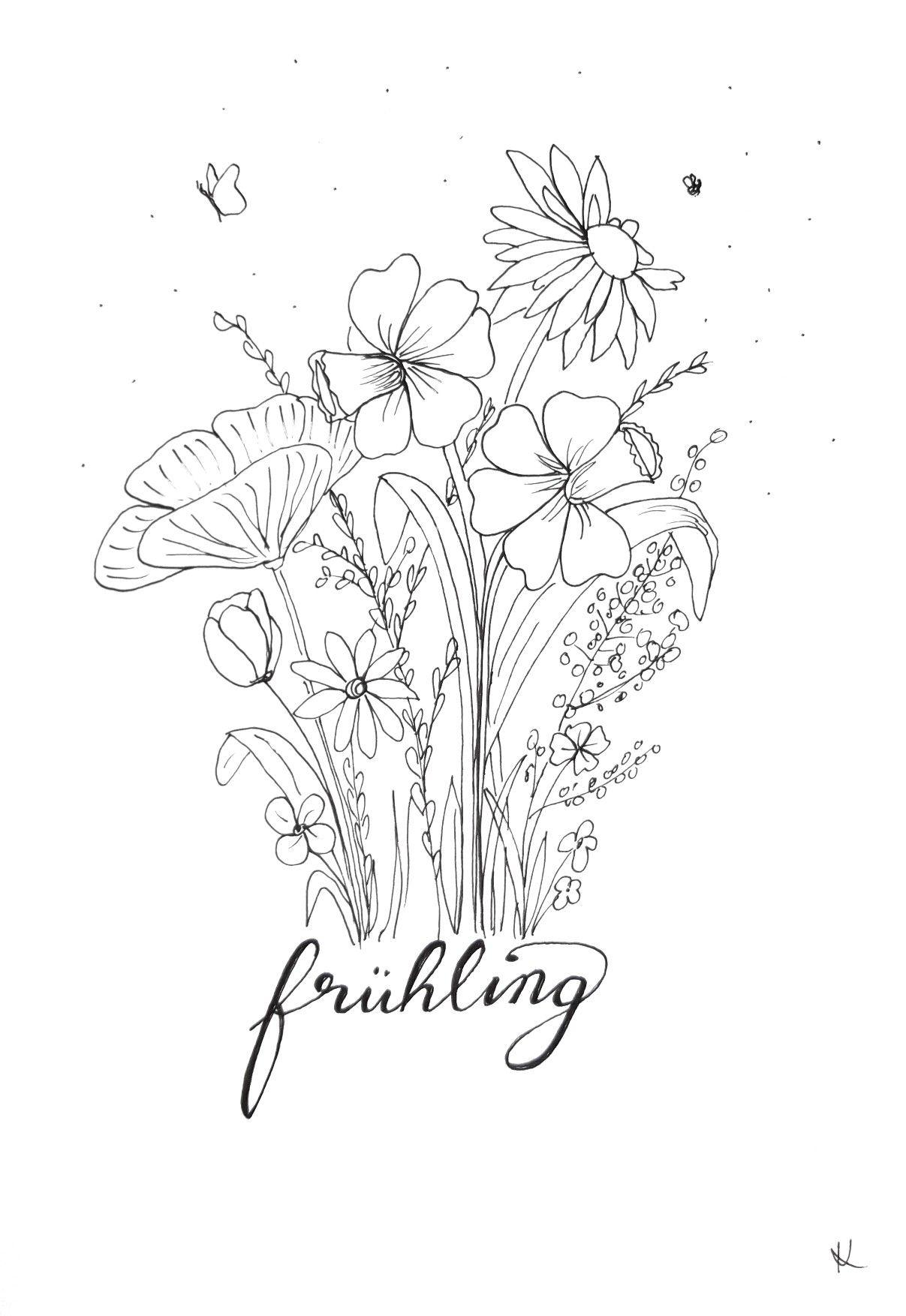 Zeichnung Blumen Zeichnen Illustration Blume Zeichnung