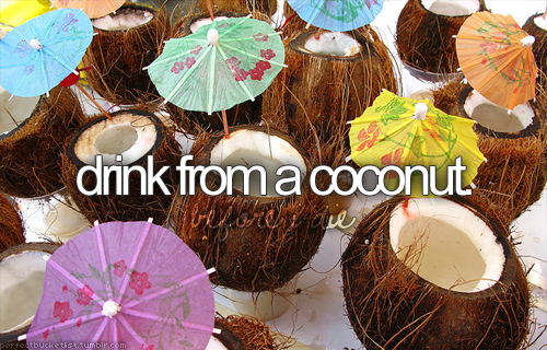Drink from a coconut!