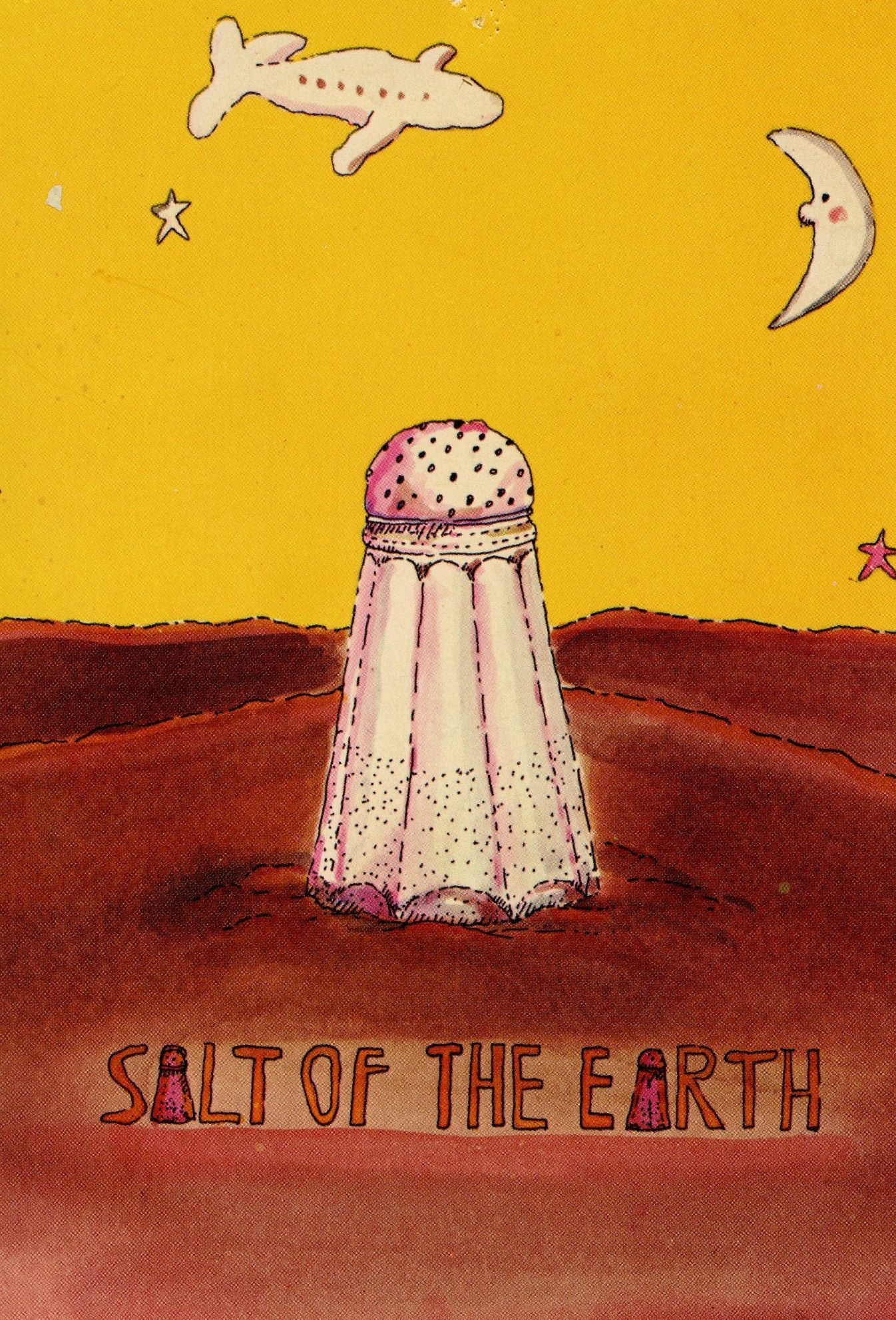 We Are The Salt Of The Earth Mind You Not The Sugar