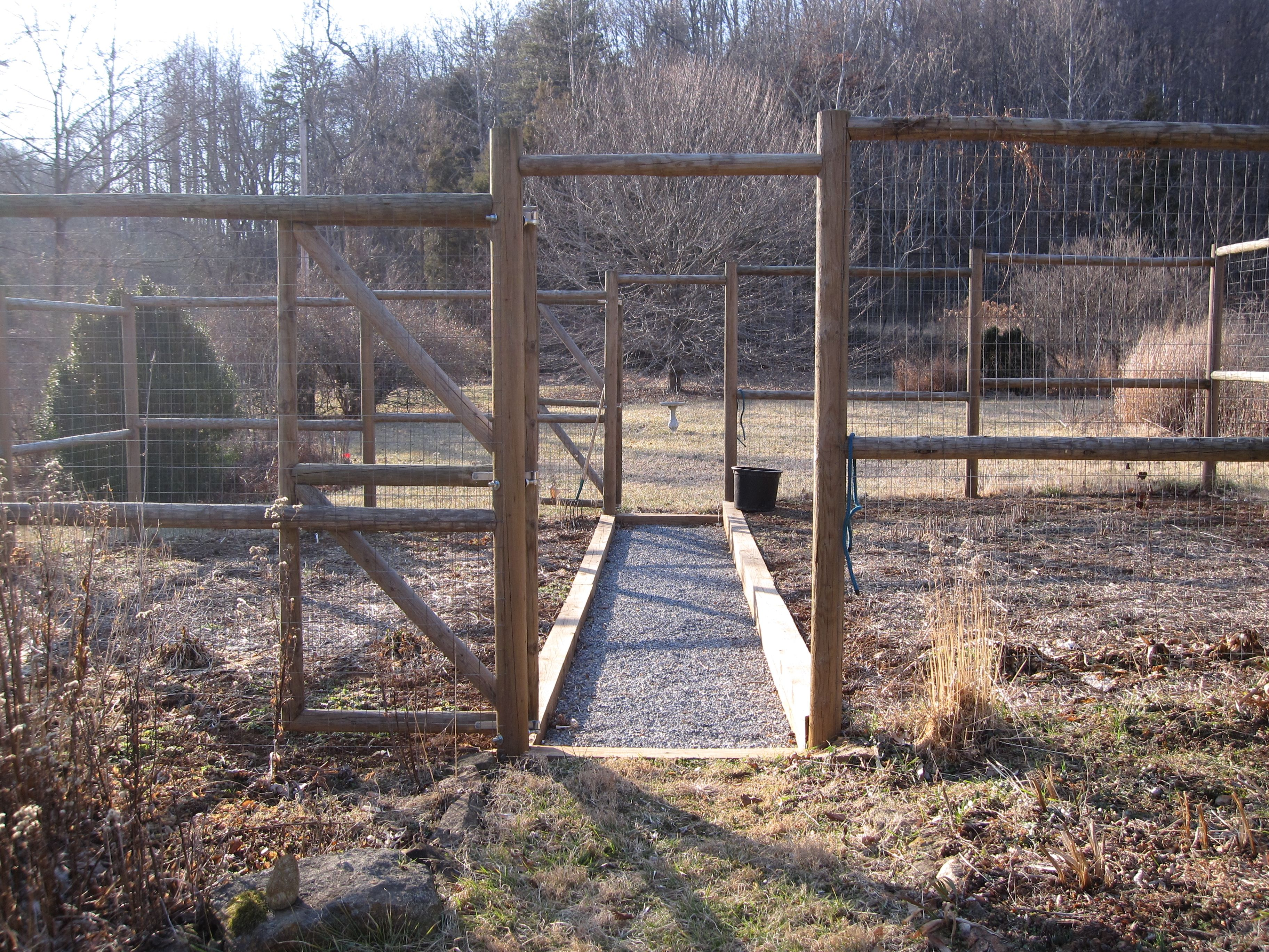 Another Idea For A Deer Proof Fence Around The Chicken
