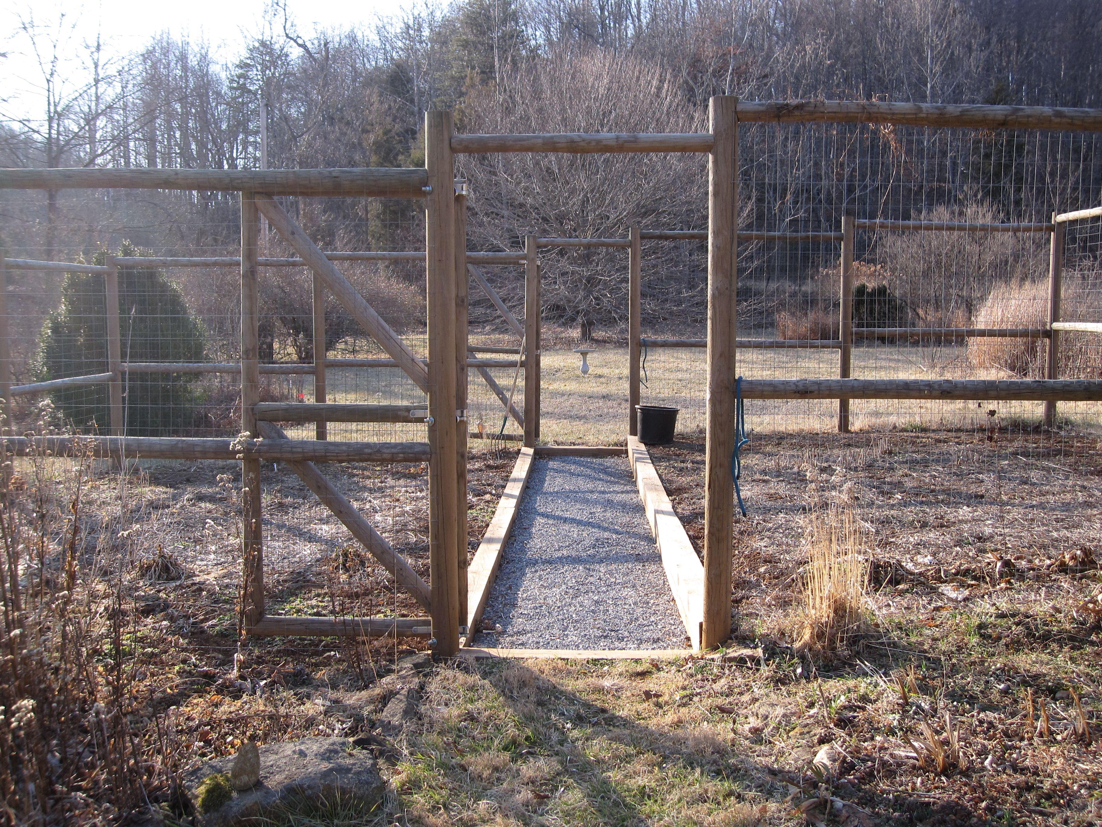Vegetable Garden Fence Ideas Veggies