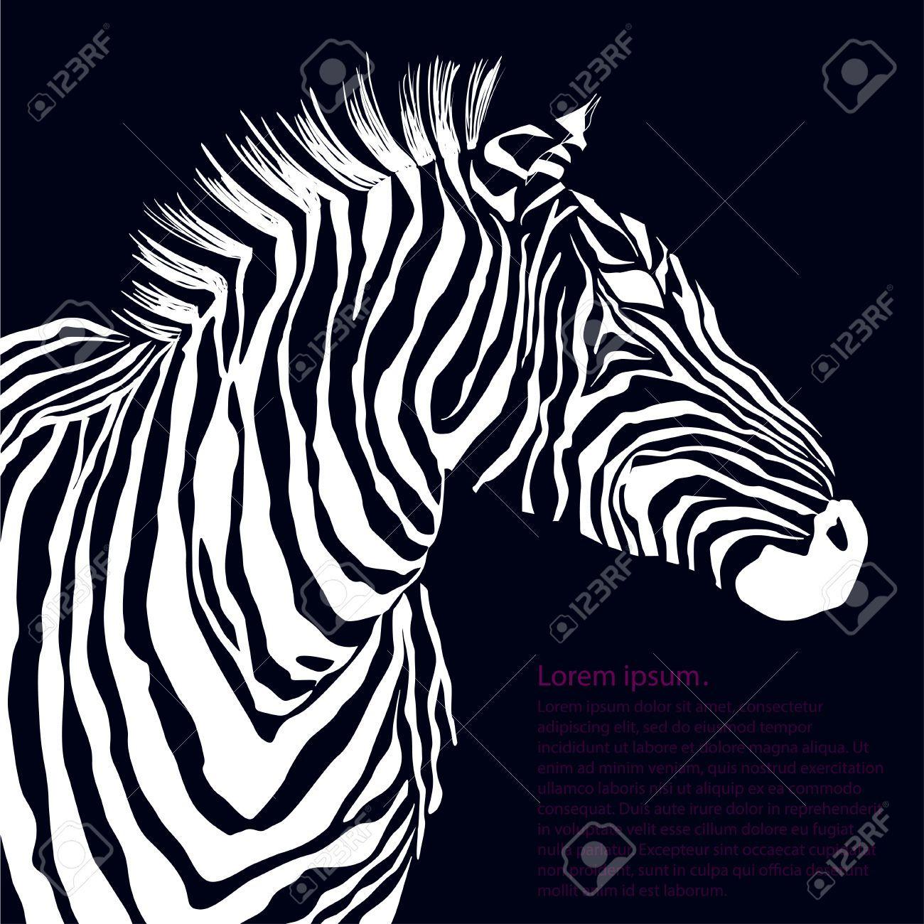 Animal Blanco Cebra Ilustración Silueta. Ilustración Vectorial Ilustraciones Vectoriales, Clip Art Vectorizado Libre De Derechos. Image 40861746.