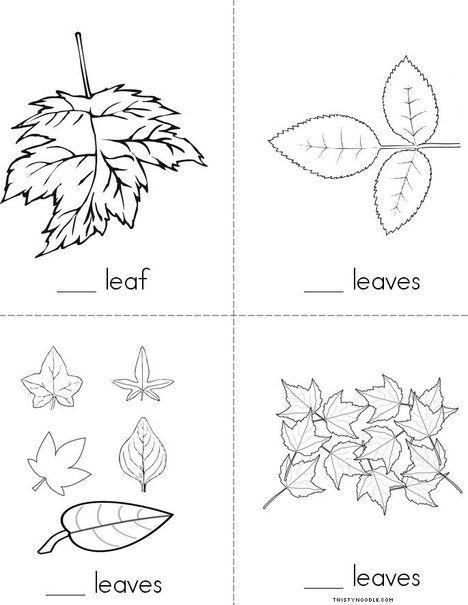Twisty Noodle Leaf Book Images