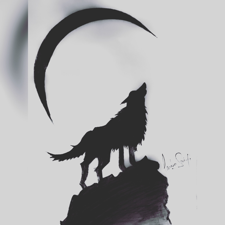 Cool Pencil Sketch Moon Sketch Drawing Wolf Sketch Easy