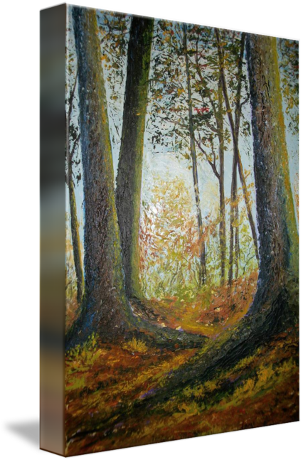 A walk in the woods by Tami Booher