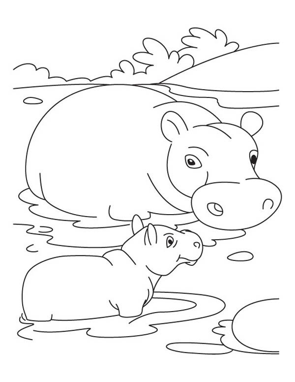 Mother Hippo And Baby In The Swamp Coloring Page