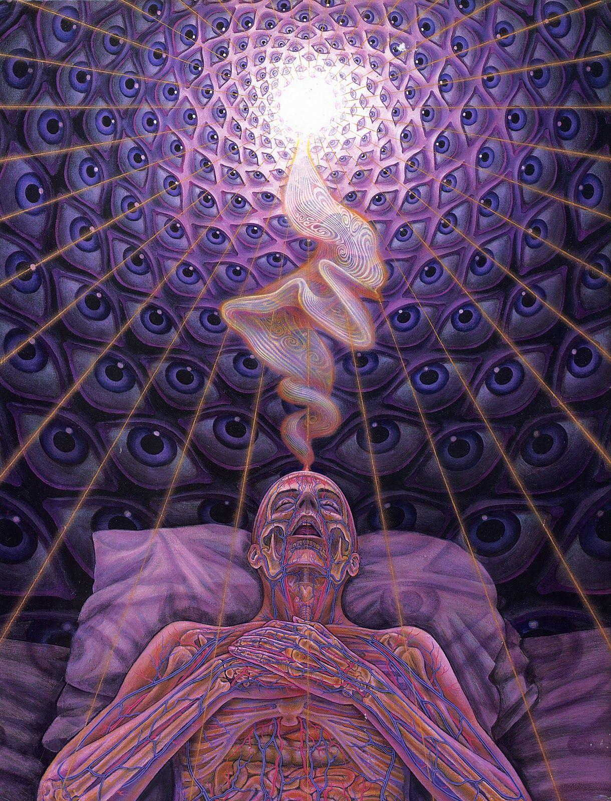Hier sieht man sehr schön, wie die Seele während der Nacht das Selbst inspiriert.  Sacred Mirrors by Alex Grey