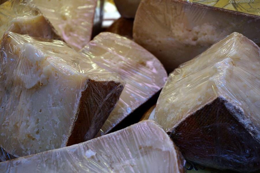 """Bologna Italy Food Tour – Taste Bologna"" by @venturists"