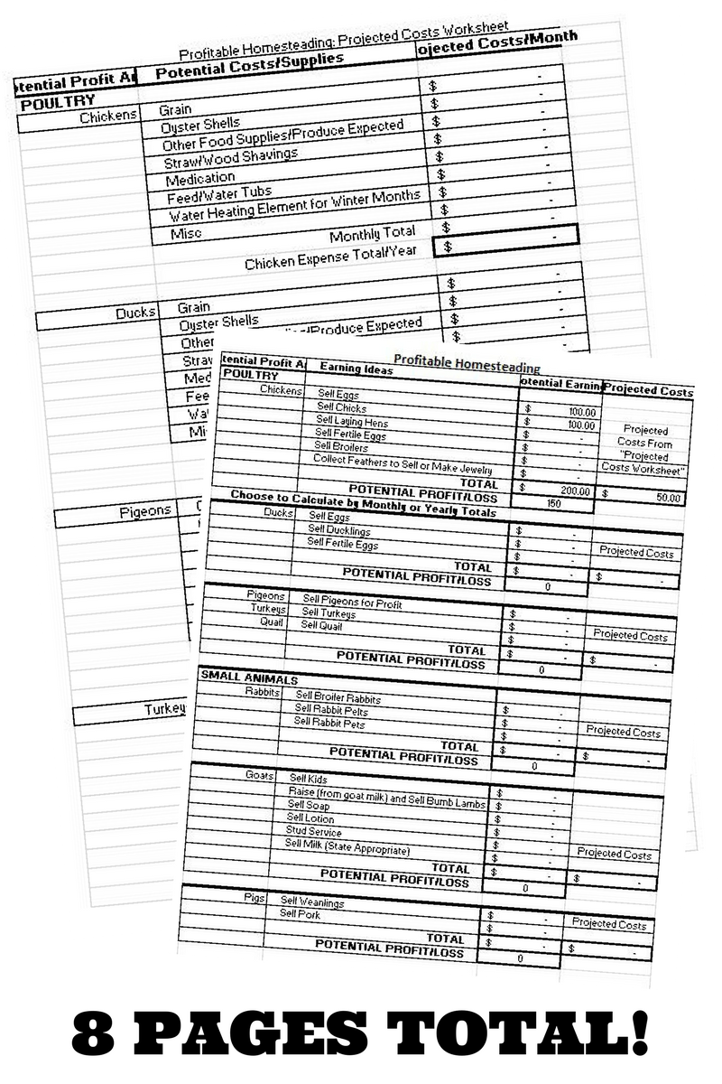 Profit And Loss Worksheet Planning Out A Profitable Homesteading Year  Homesteads And Gardens