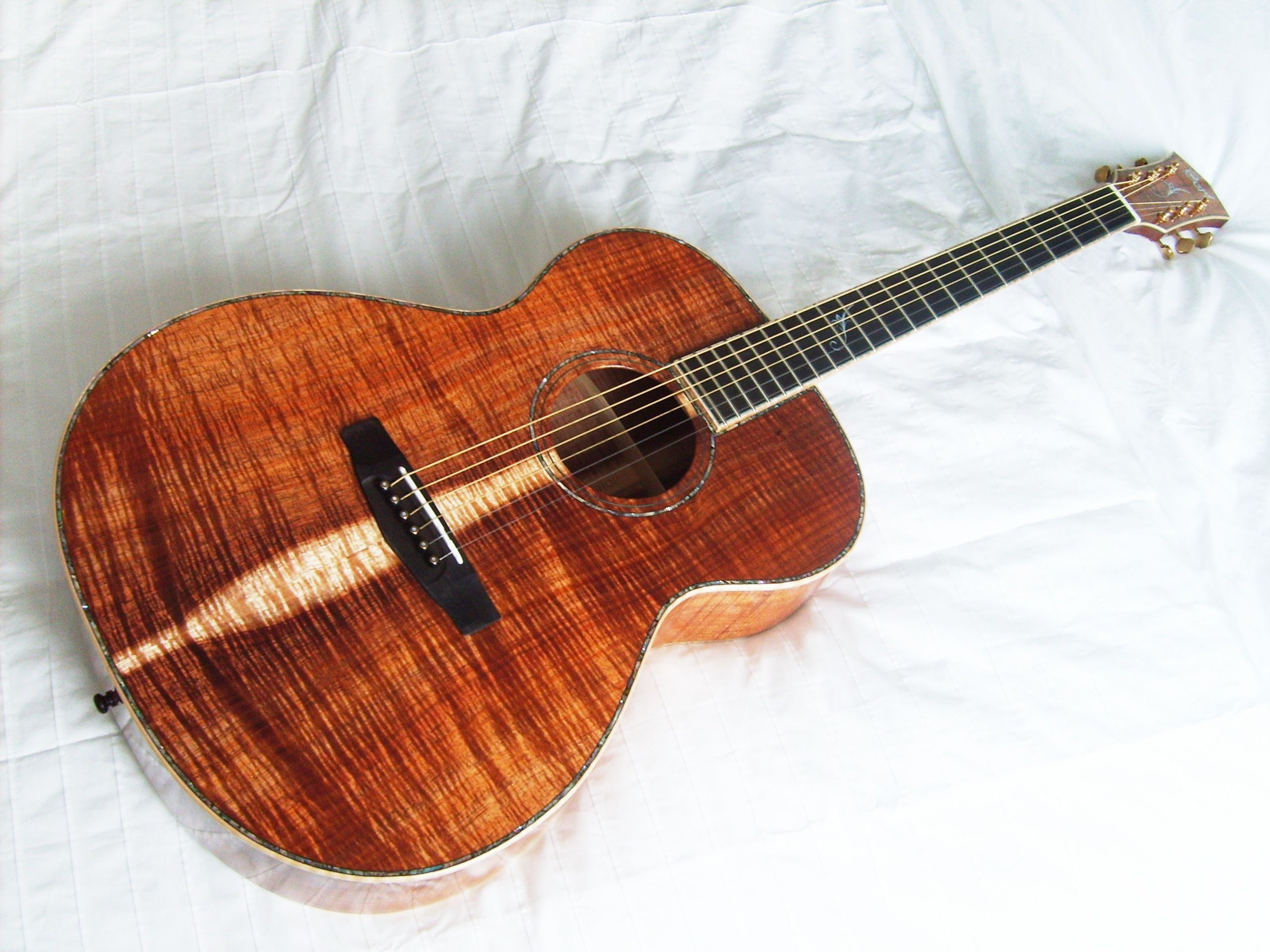 cort custom shop koa humming bird et belles guitares pinterest