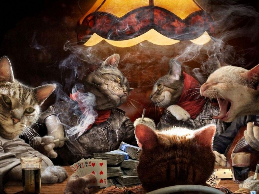 http://www.freewallpaperpoint.com/3d/cats-playing-cards