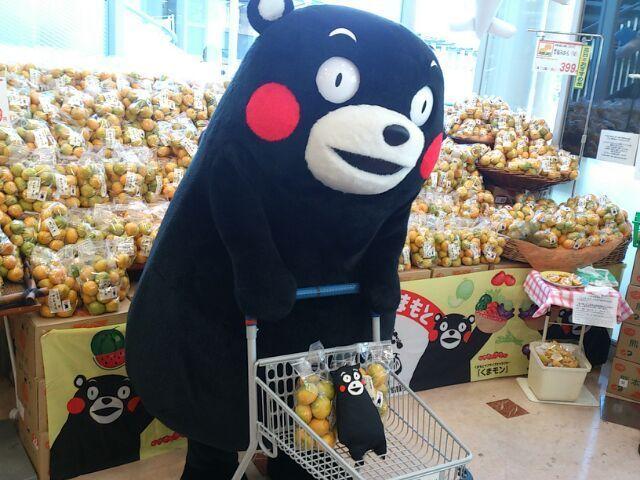 ボクもお買い物するモン♪       モン!?   みかんの前に何かいるモン☆  くまモン【公式】の投稿画像
