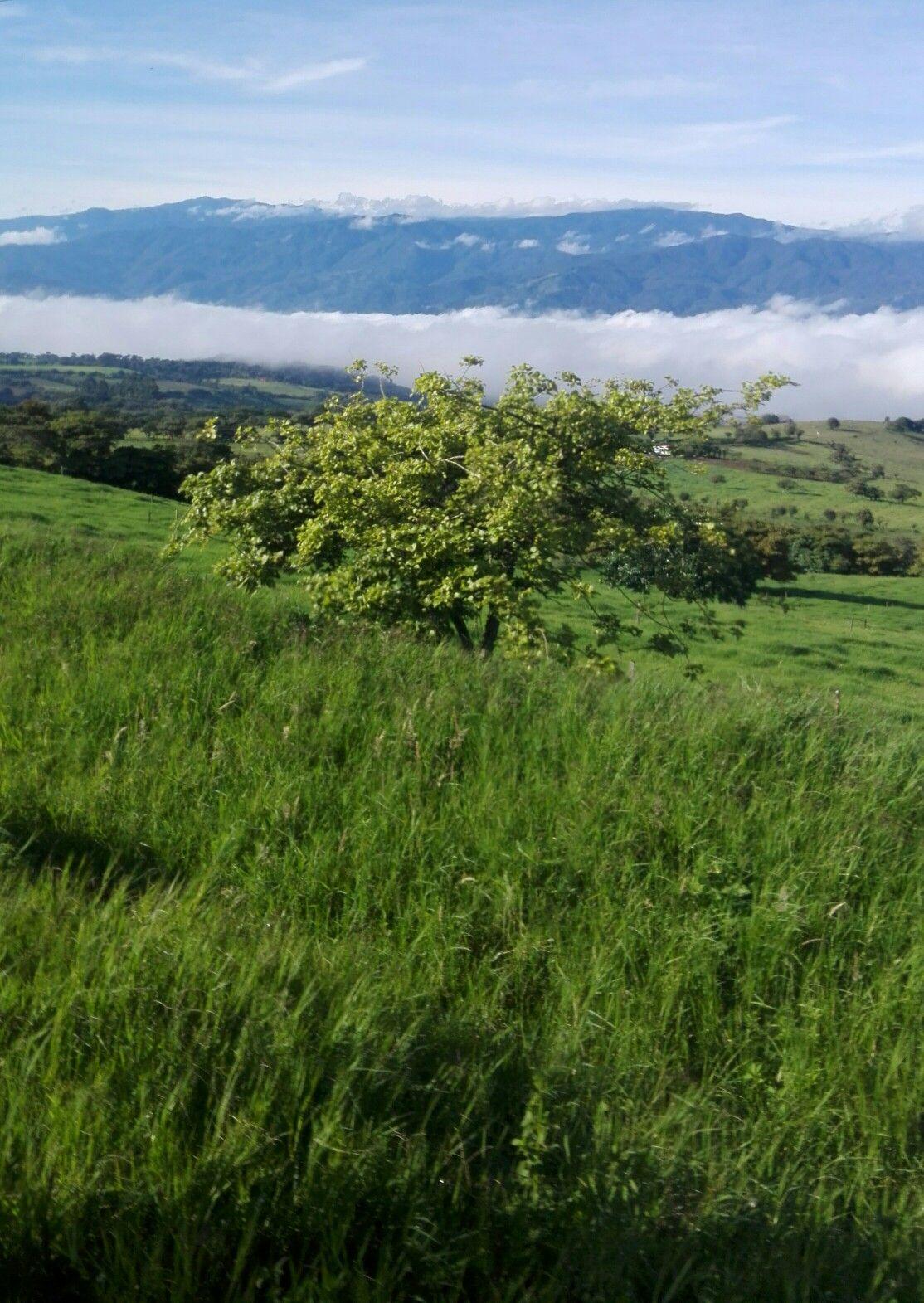 Turrialba Cartago Costa Rica