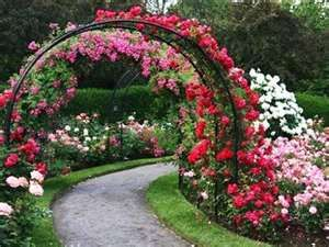 20 Metal Arches and Beautiful Yard Landscaping Ideas is part of Rose garden Landscaping - Metal arches are beautiful garden decorations
