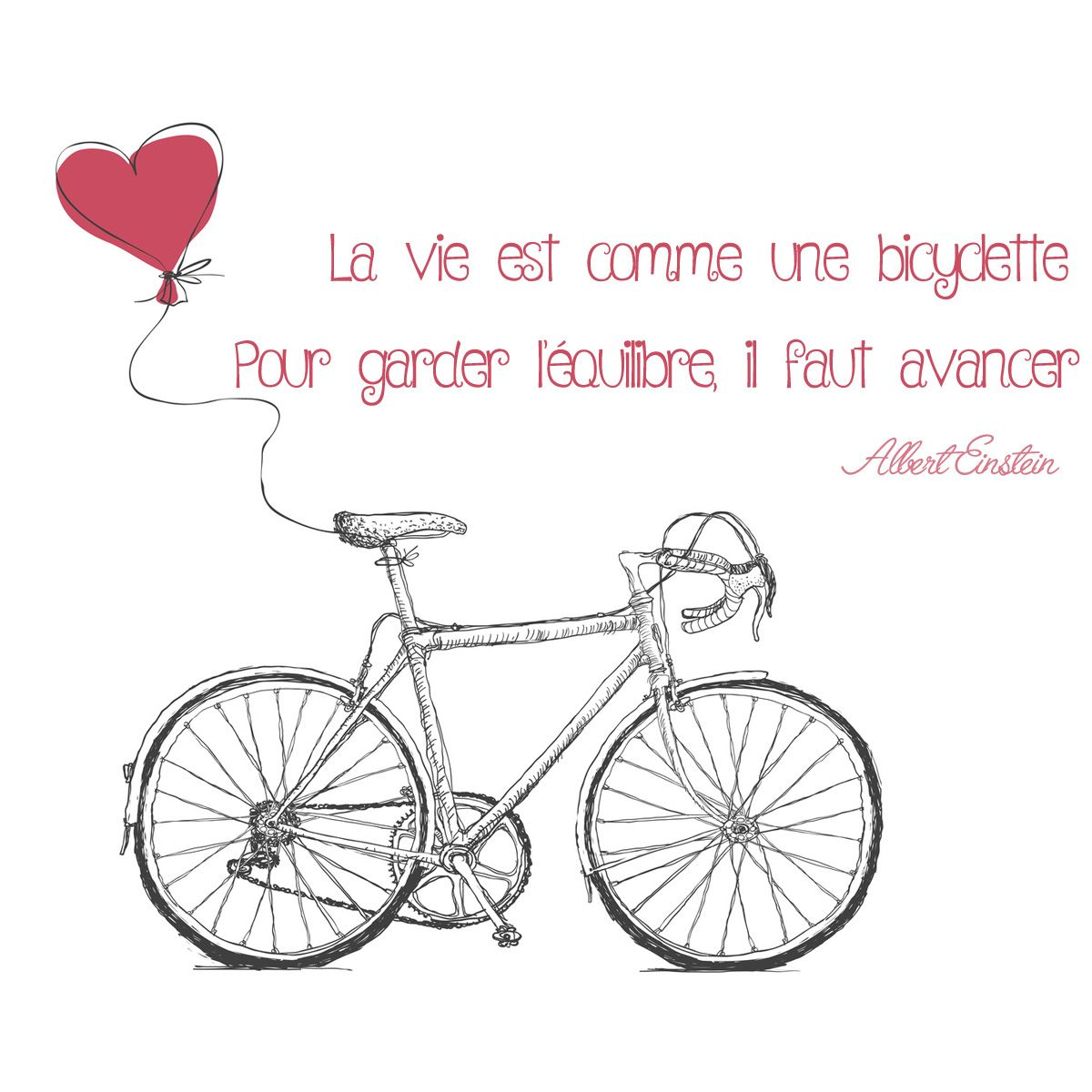 Jolie Citation D Einstein Sur La Bicyclette Einstein Citation