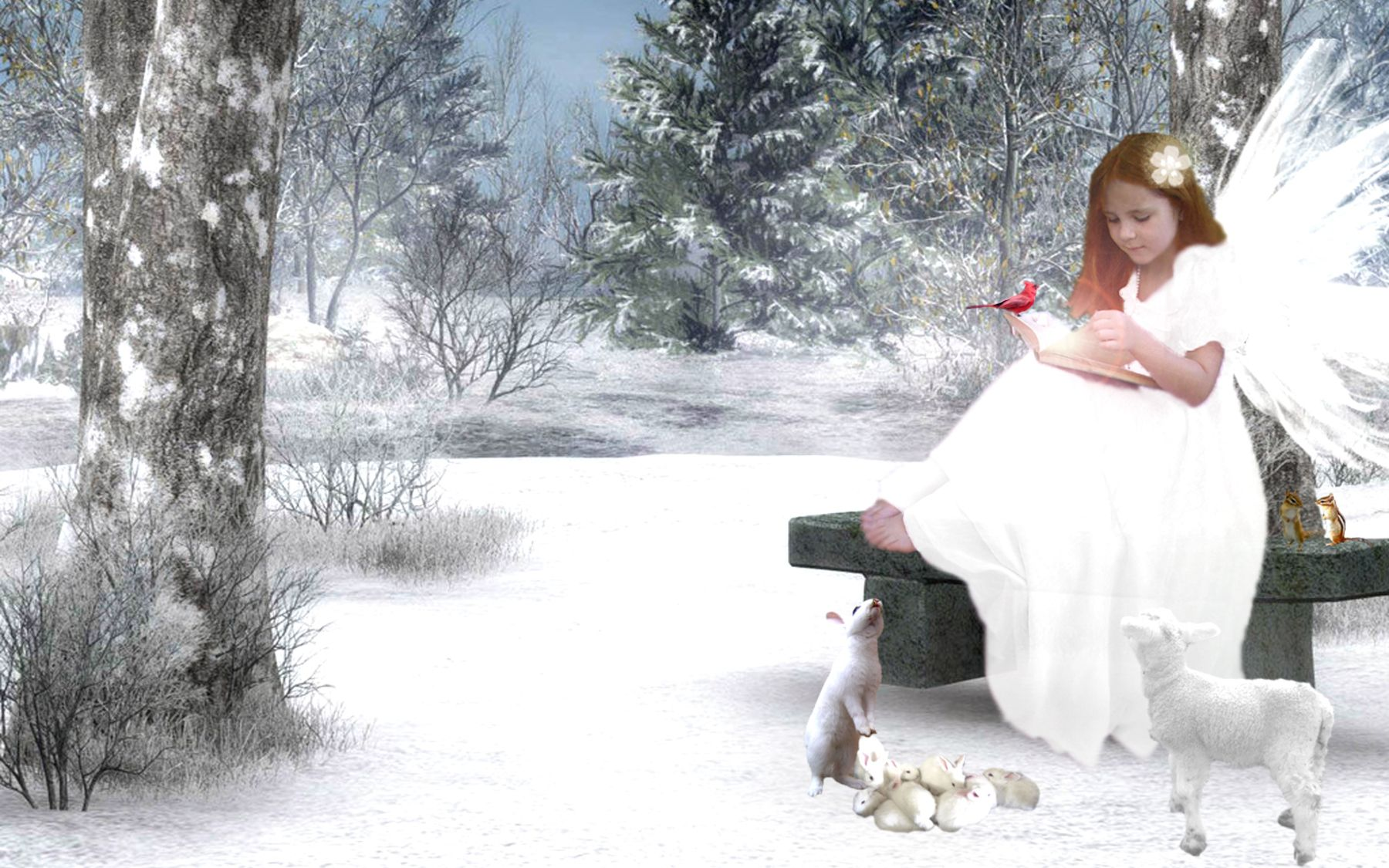 angel images free | free cute litte christmas angel wallpaper free