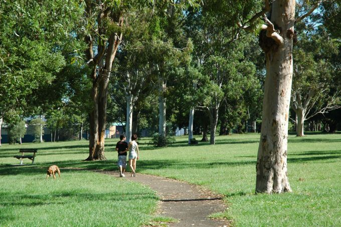 Kroll Gardens Dog Off Leash Park Clontarf Dog Park Day Trips