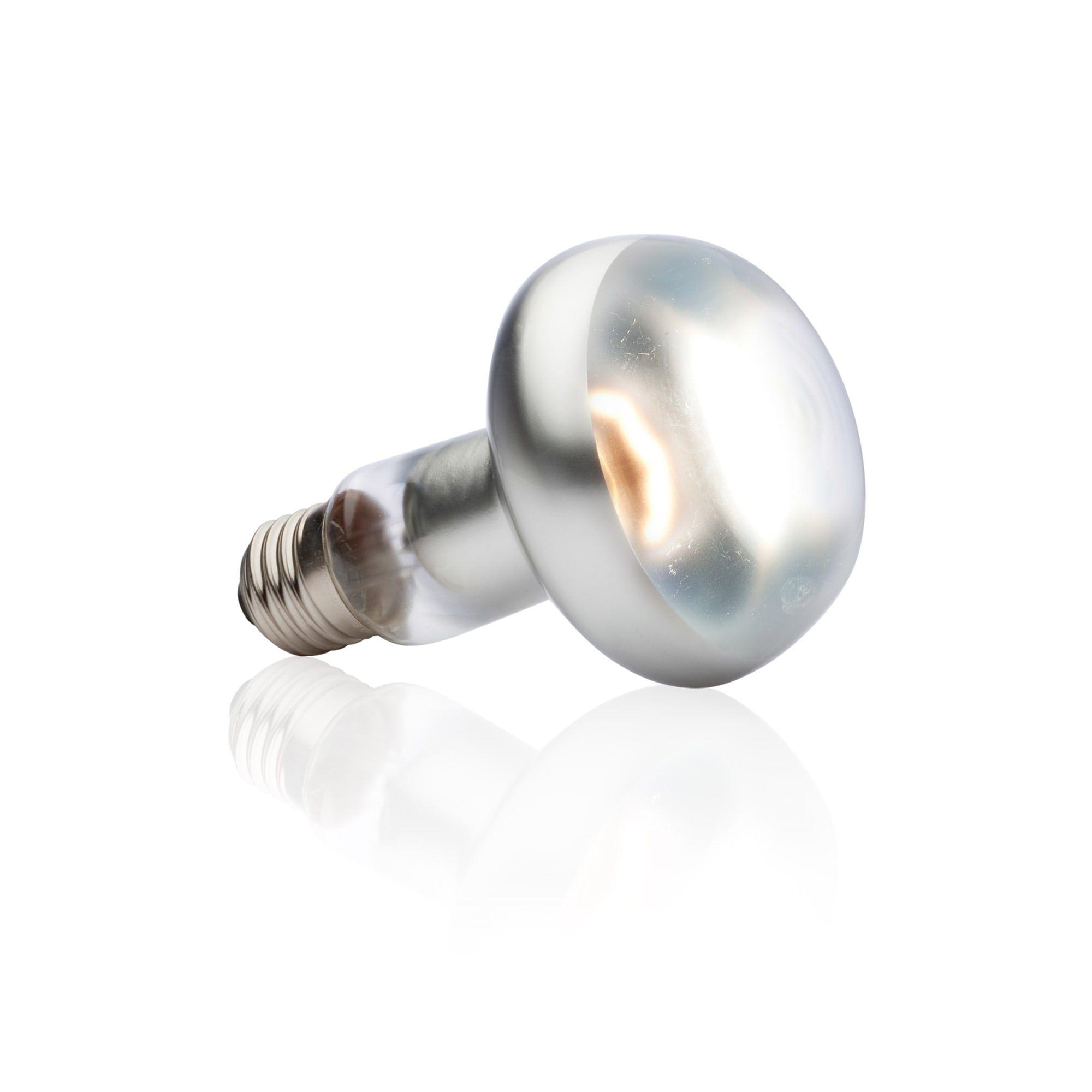 Exo Terra Intense Basking Spot Lamp 100w In 2020 Ultra Violet Bulb Uva Rays