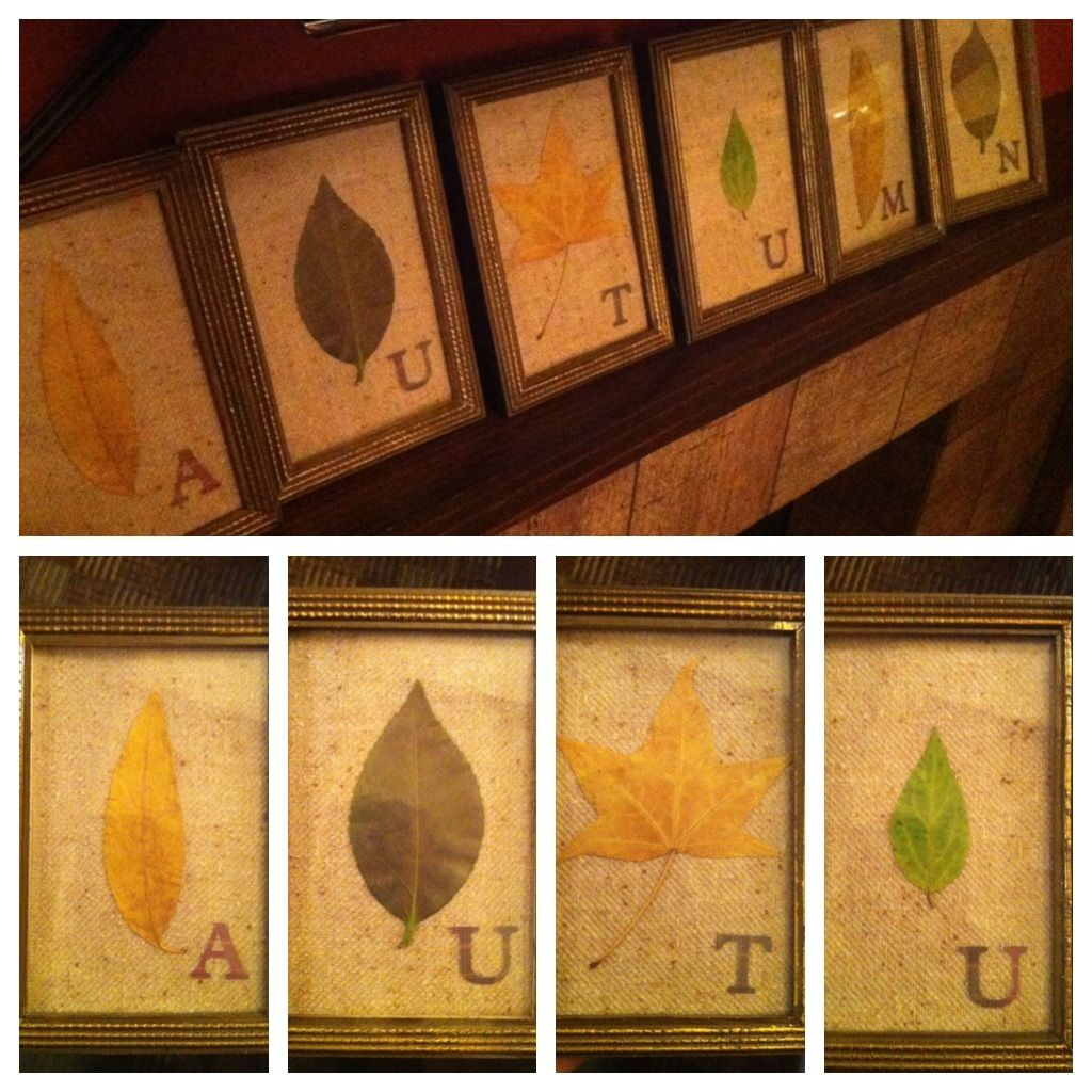 Easy fall decorations framing leaves get framed professional easy fall decorations framing leaves jeuxipadfo Image collections