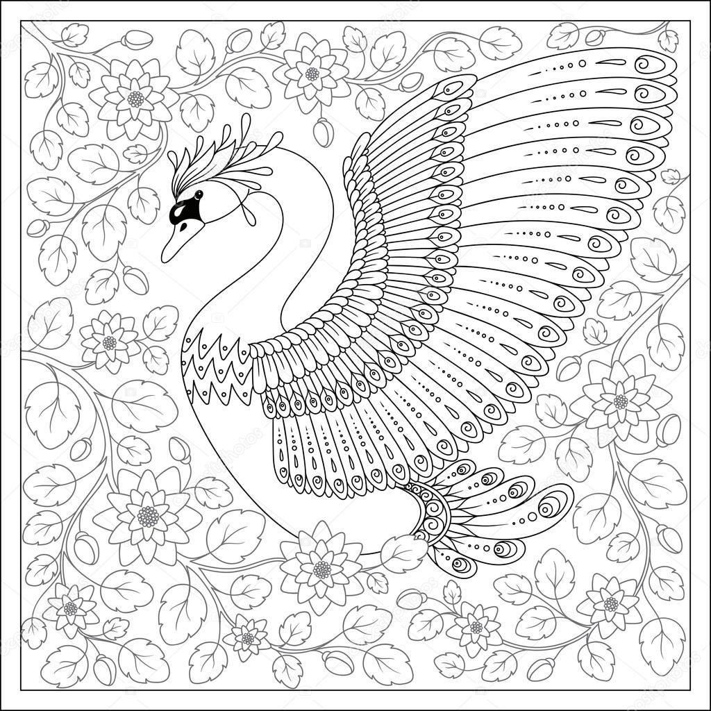 Pin auf COLOR-BIRDS