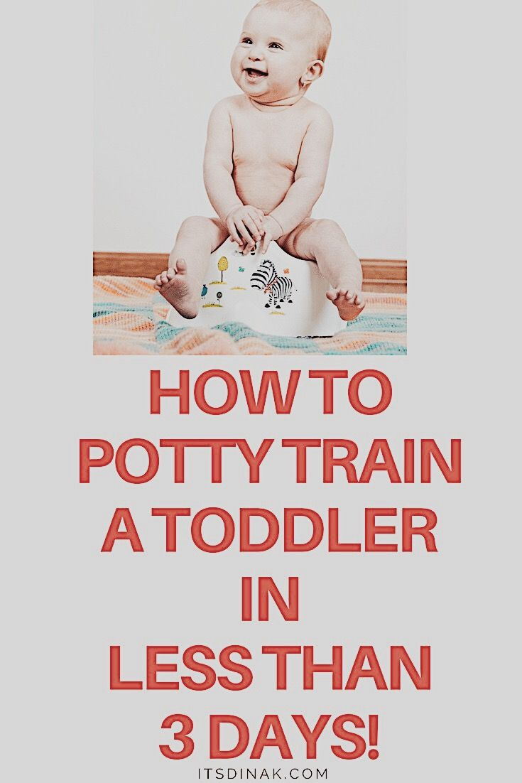 Steps to potty training puppies tips, terrible twos nap