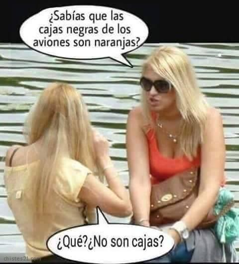 Cajas Negras Sunglasses Women Spanish Humor Humor