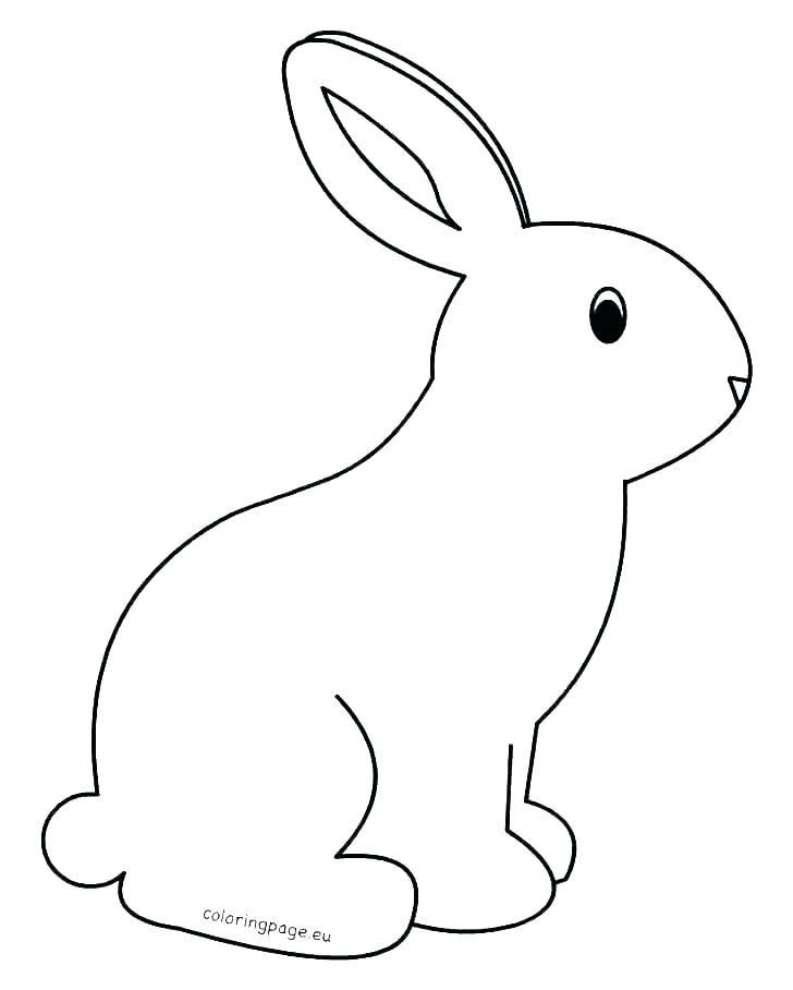 Easter Rabbit Color Page Flower Coloring Pages Printable Bunny